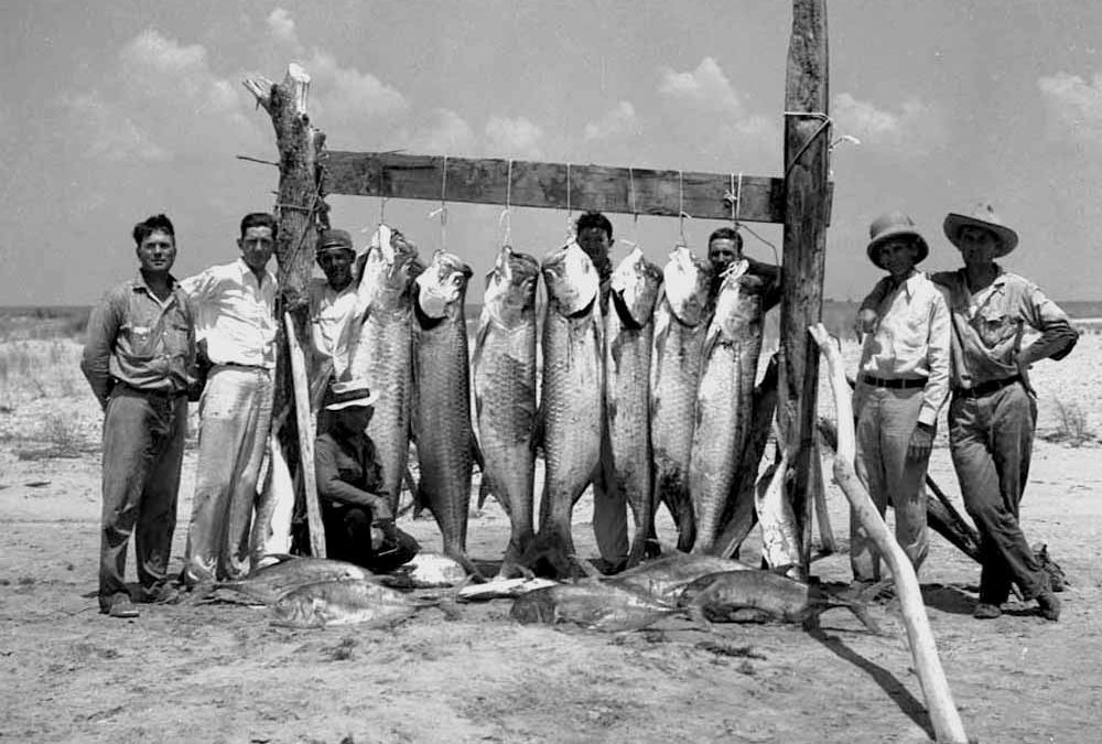 Tarpon Catch, Fonville Winans